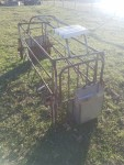 farrowing crates with flip up sides