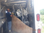 pic 1 of 2 stacking 8 crates , floors, heat mats & Feeders in a horse trailer from Duchesne Utah