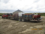 10 red farrowing pens and gates to Bloomfield IA along with flush pans and stands to Humeston IA
